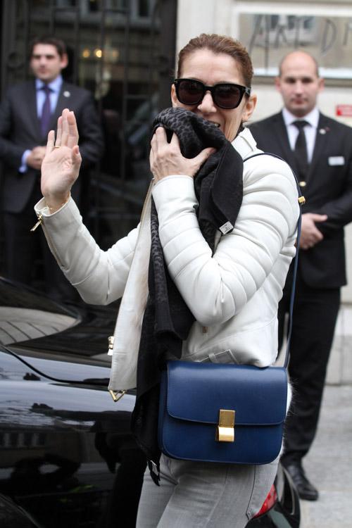 Celine Dion Celine Classic Box Bag-3