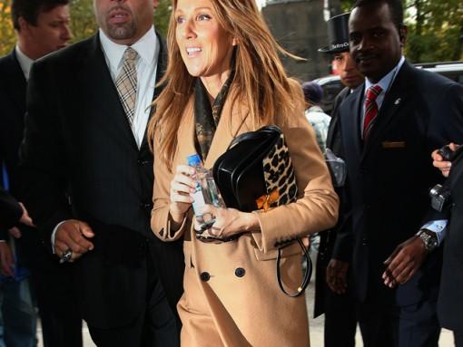 Celine Dion carries leopard Celine bag in NYC (5)