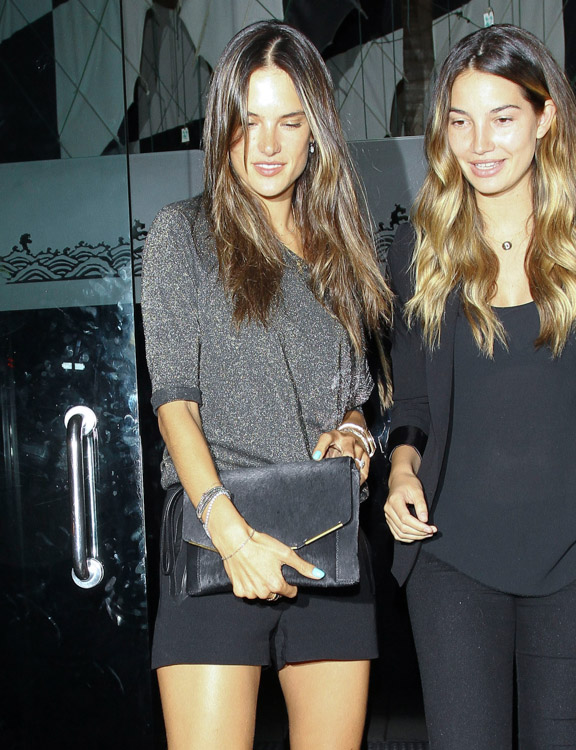 The Many Bags of Alessandra Ambrosio (12)