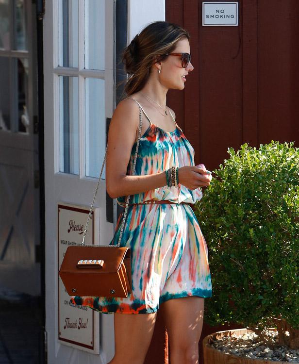 The Many Bags of Alessandra Ambrosio-14