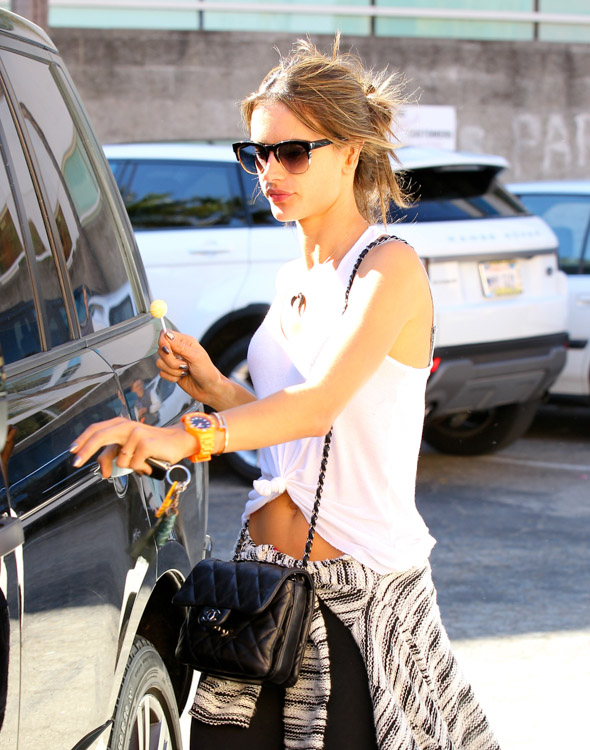 The Many Bags of Alessandra Ambrosio (30)