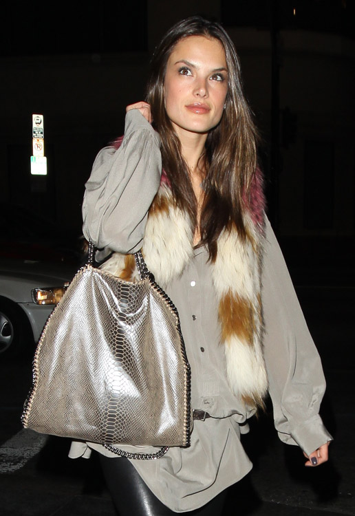 The Many Bags of Alessandra Ambrosio-5
