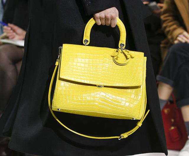Dior Fall 2014 Handbags 3