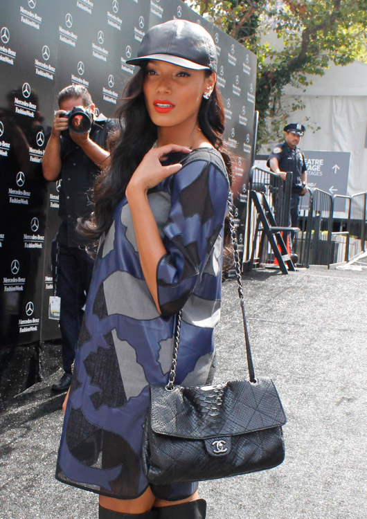 Celebrities and Their Chanel Bags-62