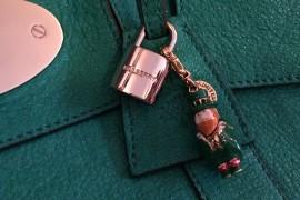 Mulberry Lock Closeup