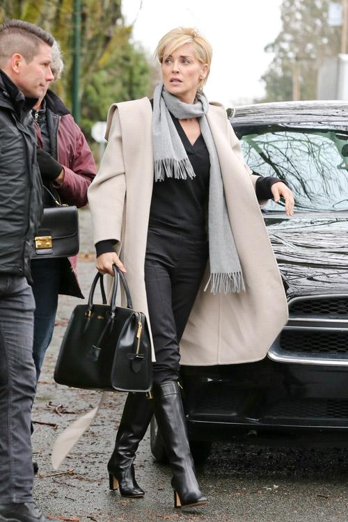 Sharon Stone Alexander McQueen Heroine Zip Tote-1