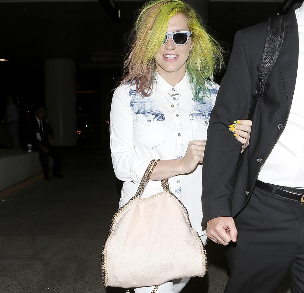 Kesha Stella McCartney Falabella Bag