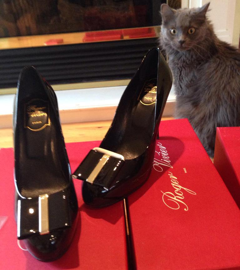 Roger Vivier Heels and Cat