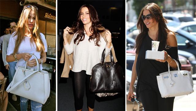 The Many Bags of Sofia Vergara (36)