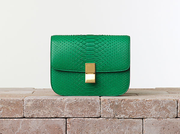 Celine Classic Box Bag in Python in Grass