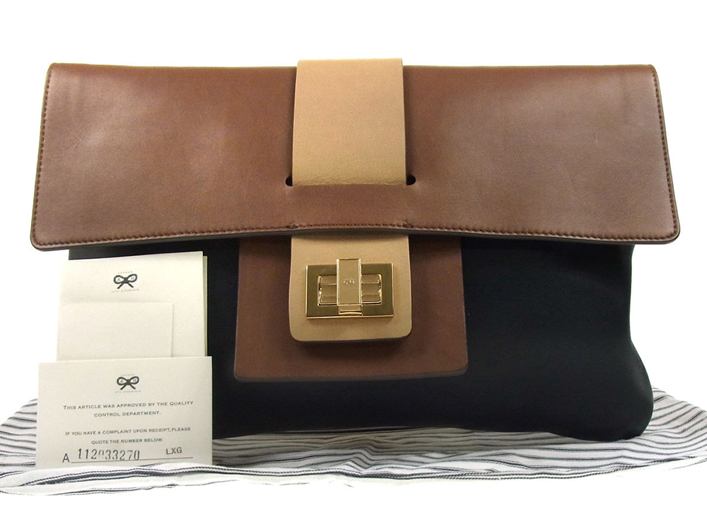 Anya Hindmarch Tricolor Clutch