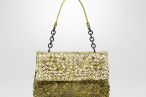 The New Bottega Veneta Olimpia Bag