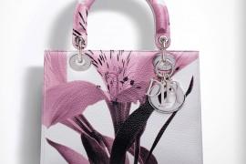 Dior Lady Dior Bags 4