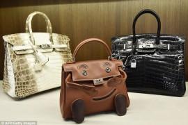 Rare Hermes Bags