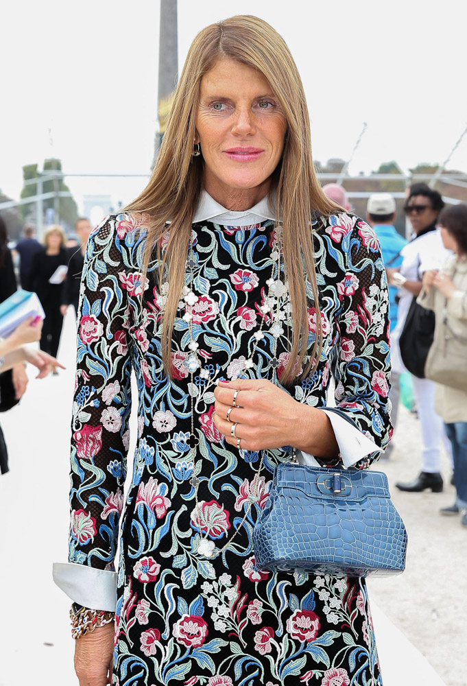 The Many Bags of Anna Dello Russo-21