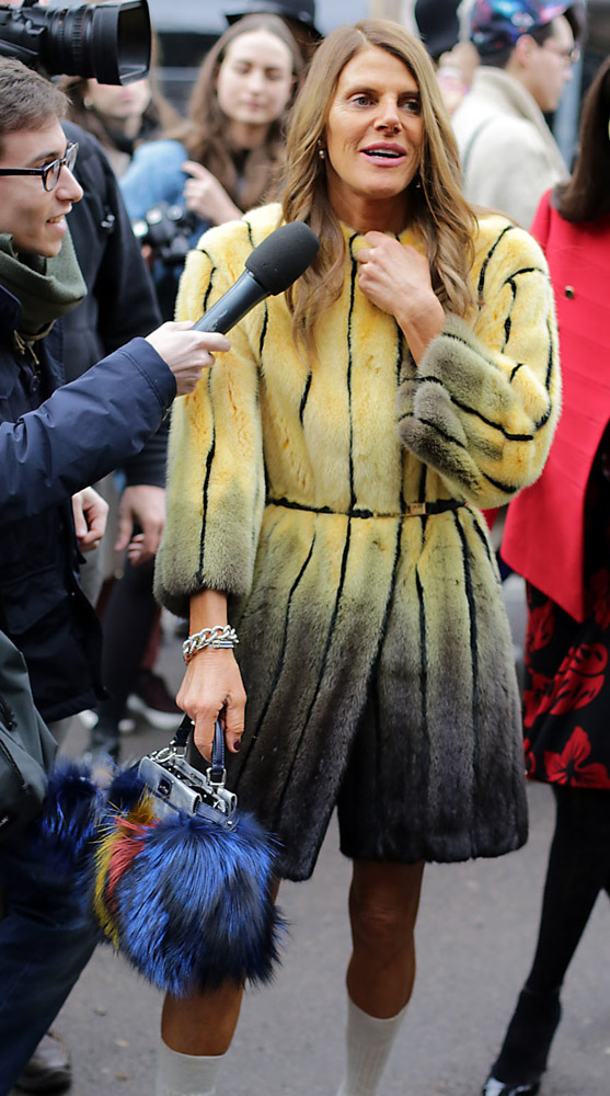 The Many Bags of Anna Dello Russo-27