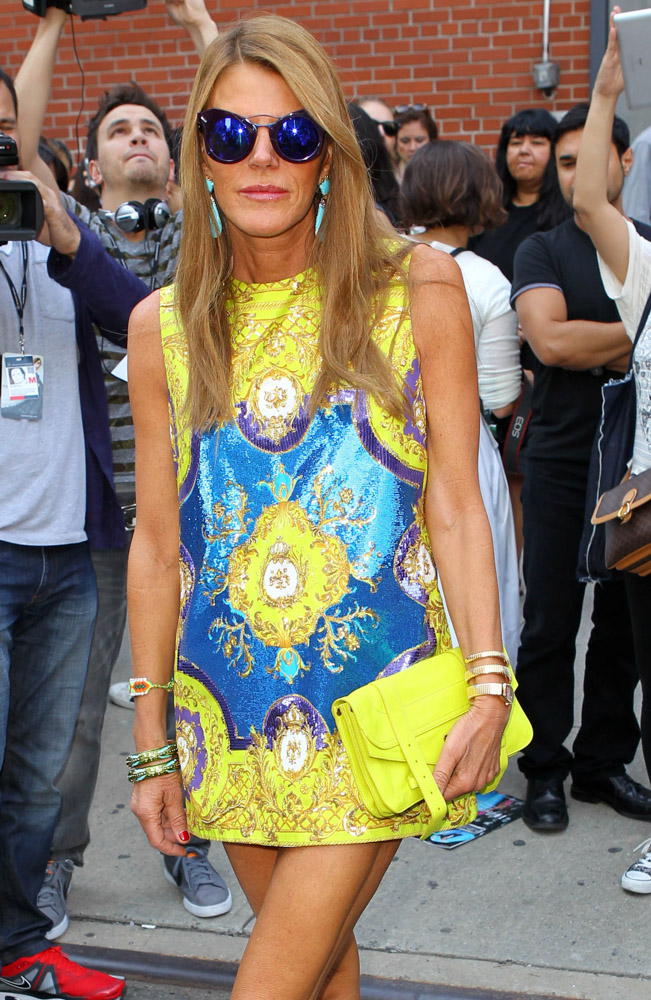 The Many Bags of Anna Dello Russo-8