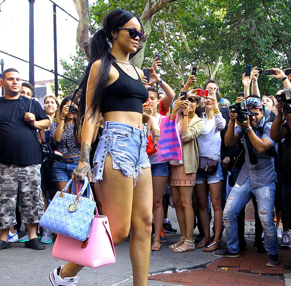 Rihanna Christian Dior Lady Dior Bag Christian Dior Addict Tote