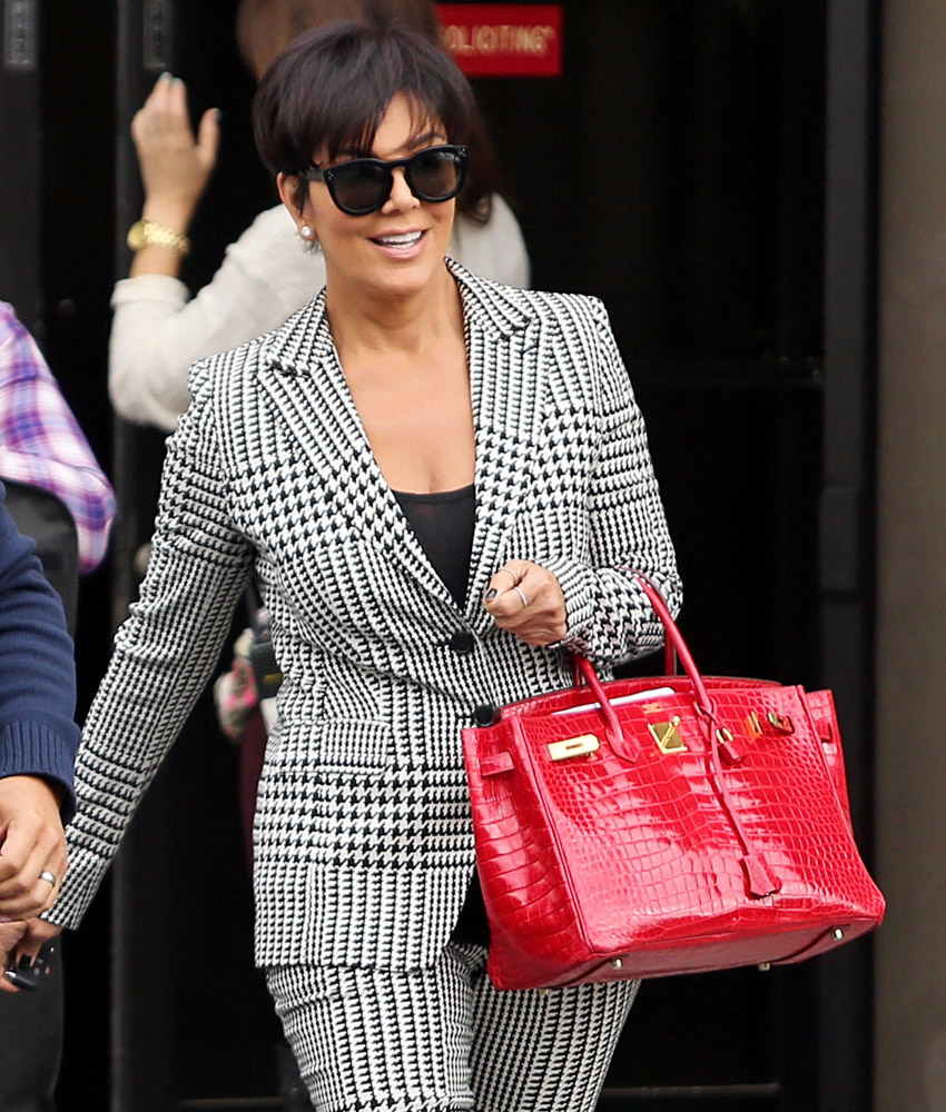 Celebrity Exotic Handbags-16