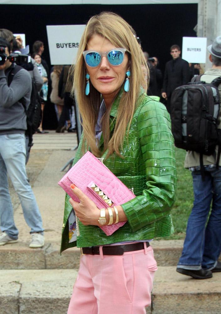 Celebrity Exotic Handbags-49