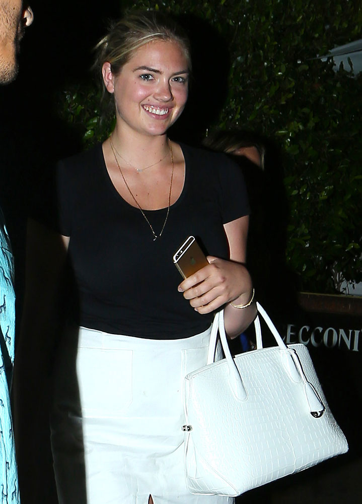 Kate-Upton-Christian-Dior-Open-Bar-Crocodile-Bag