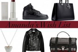 Amanda's 2014 Holiday Wish List