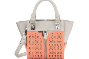 7 Bags Under $39 From Danielle Nicole