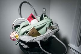 Praise for the Prada Inside Bag