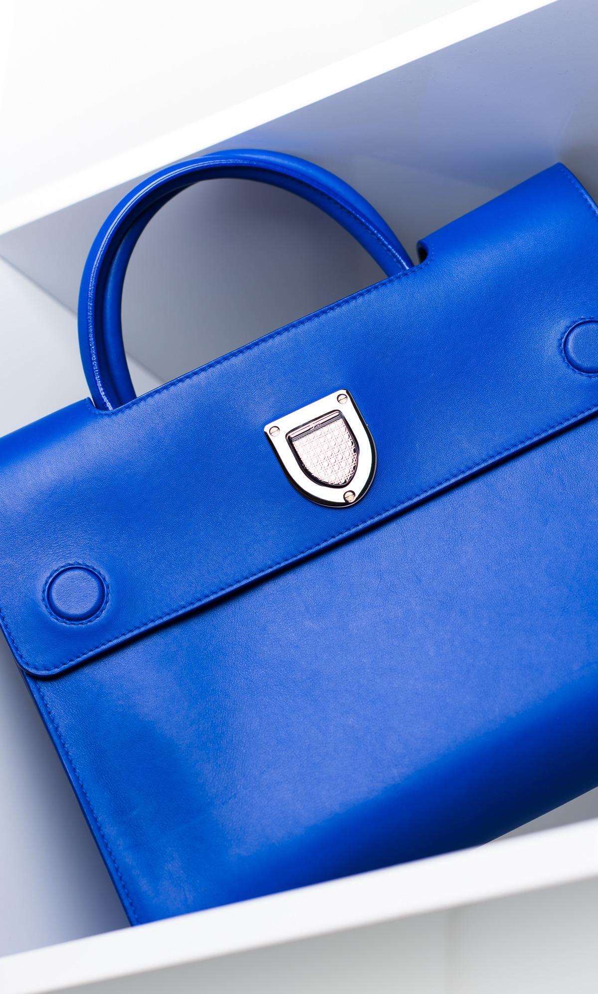 Dior Diorever Bag (4)