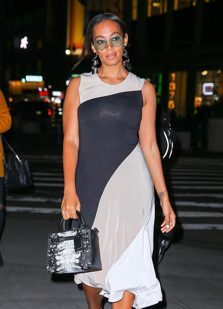 Solange-Knowles-REED-x-Kohls-Boxer-Bag