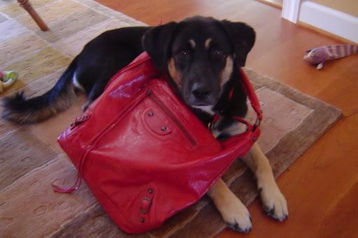 tPF MemberL Tabbyco Bag: Balenciaga Rouge VIF Courier Bag Shop: Similar styles via Balenciaga