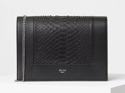 celine-frame-evening-clutch-black-python