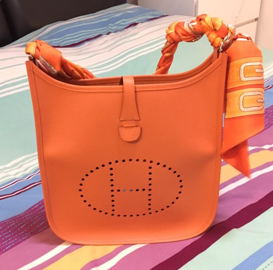 tPF Member: Coolz Bag: Hermès Evelyn Bag