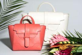 Introducing Senreve Handbags