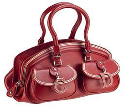 Medium Dior Detective Bag