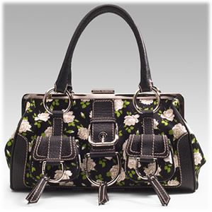 Dolce and Gabbana Floral Frame Bag