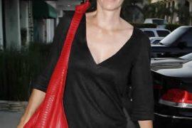Courtney Cox Bird Handbags Lady