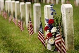 Memorial Day Web SheBang
