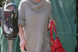 Katherine Heigl Style: Name that Bag!