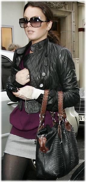 Lindsay Lohan Python Handbag