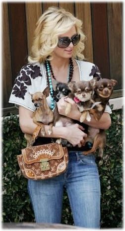 Paris Hilton Caption It