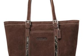 Coach Suede Beaded Tote