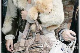 Name Kate Moss' Bag!