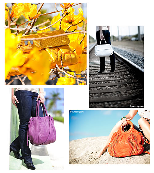 Purse Blog Bag Art