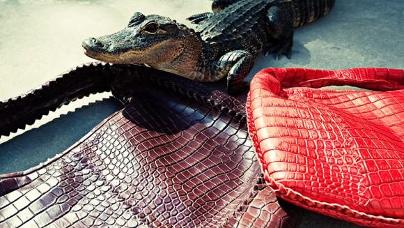 Bottega Veneta Icon Handbags in Croc