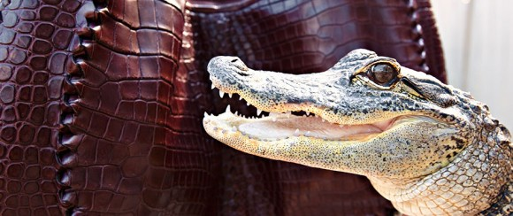 Bottega Veneta Truffle Soft Crocodile Hobo Bag
