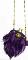 Coach Poppy Feather Crossbody Bag