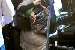 Ashley Olsen Travels With Goyard