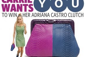 Sex and the City 2 Adriana Castro Handbag Giveaway