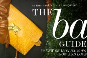 Check out Net-a-Porter's Bag Guide for Fall 2010